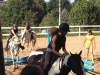 Sommerferienprogramm 2012, Pferdepartner Franken e.V.
