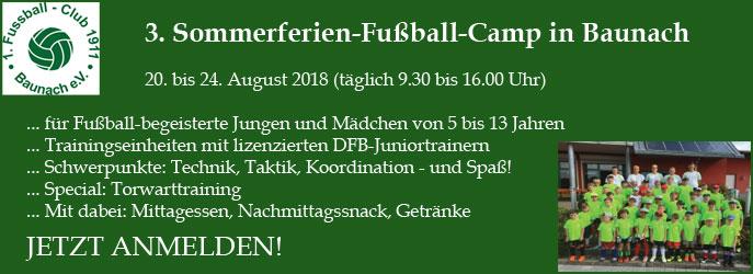 1. FC Baunach