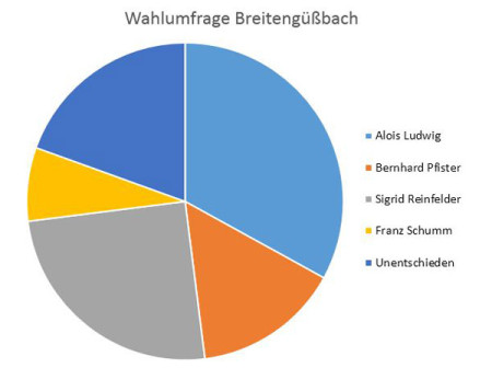 Wahlumfrage Breitengüßbach 2013 Tortengrafik
