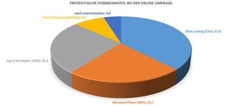 Online-Umfrage Breitengüßbach 2013 Kreisgrafik