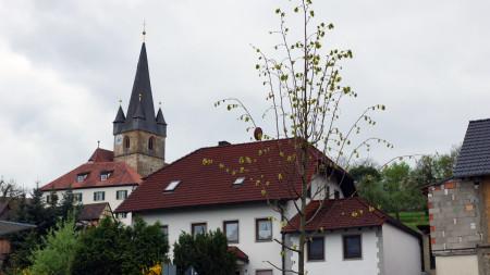 Lindenpflanzung OGV Mürsbach 2013