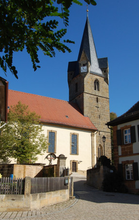 Döringstadt Turmfalken Barfussschnecke Mai 2013 (4)