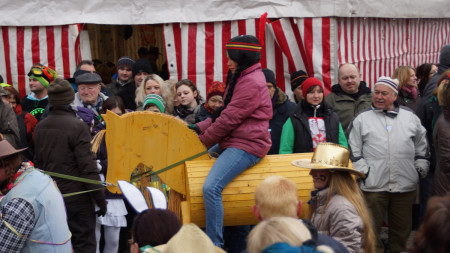 Faschingsumzug Bauanch 2013 Pferdepartner Franken