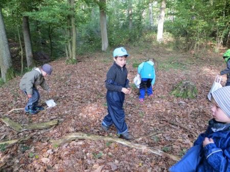 Waldprojekt Kindergarten Baunach 2014