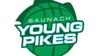 Logo Baunach Basketball 2015 400