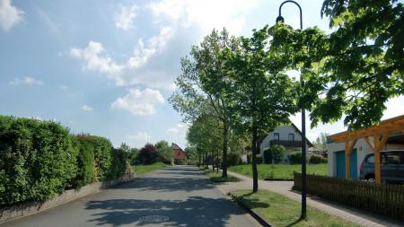 Bäume Frankenstraße Zapfendorf