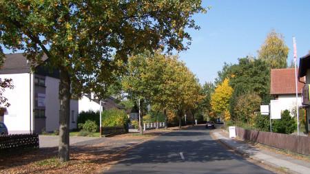 Bäume Laufer Straße Zapfendorf